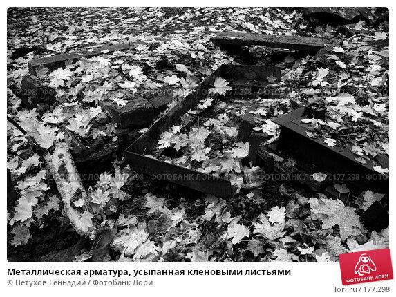 Металлическая арматура, усыпанная кленовыми листьями, фото № 177298, снято 27 октября 2007 г. (c) Петухов Геннадий / Фотобанк Лори