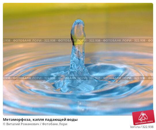 Метаморфоза, капля падающей воды, фото № 322938, снято 28 мая 2005 г. (c) Виталий Романович / Фотобанк Лори