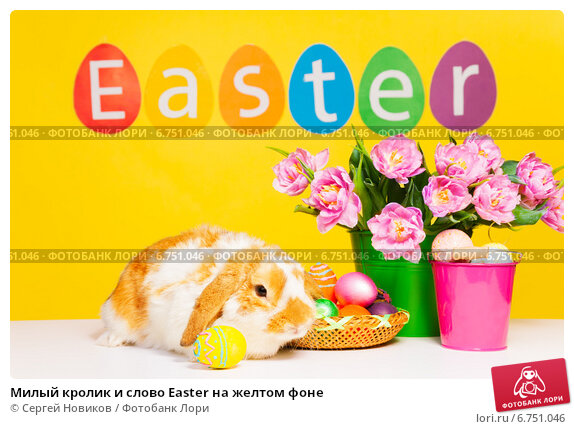 Купить «Милый кролик и слово Easter на желтом фоне», фото № 6751046, снято 5 апреля 2014 г. (c) Сергей Новиков / Фотобанк Лори