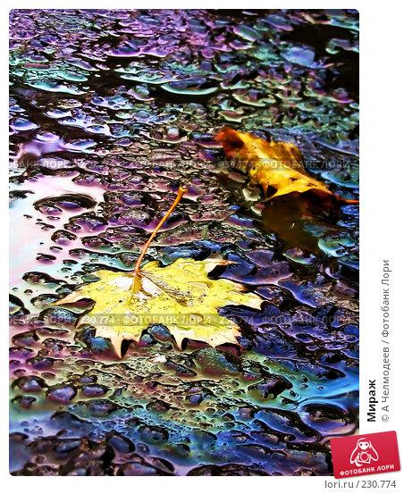 Купить «Мираж», фото № 230774, снято 27 октября 2005 г. (c) A Челмодеев / Фотобанк Лори