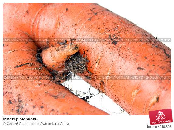 Мистер Морковь, фото № 240306, снято 21 марта 2008 г. (c) Сергей Лаврентьев / Фотобанк Лори