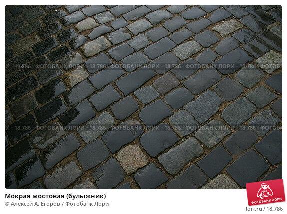 Мокрая мостовая (булыжник), фото № 18786, снято 27 июля 2006 г. (c) Алексей А. Егоров / Фотобанк Лори
