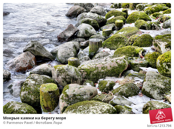Мокрые камни на берегу моря, фото № 213794, снято 13 февраля 2008 г. (c) Parmenov Pavel / Фотобанк Лори