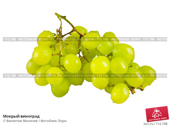 Мокрый виноград, фото № 112198, снято 13 января 2007 г. (c) Валентин Мосичев / Фотобанк Лори