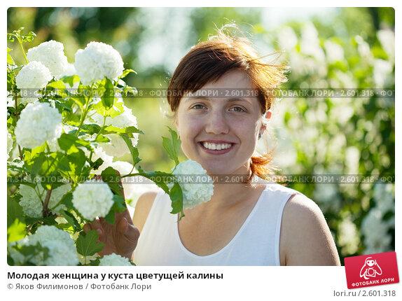 Купить «Молодая женщина у куста цветущей калины», фото № 2601318, снято 5 июня 2011 г. (c) Яков Филимонов / Фотобанк Лори