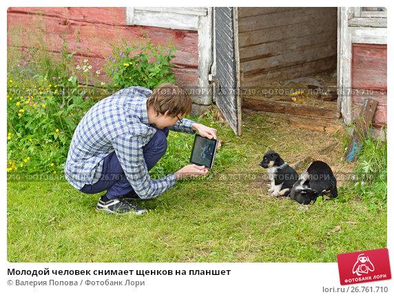Купить «Молодой человек снимает щенков на планшет», фото № 26761710, снято 22 июля 2017 г. (c) Валерия Попова / Фотобанк Лори
