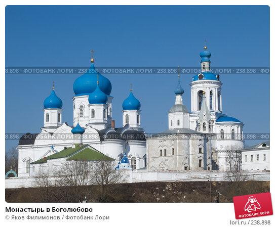 Монастырь в Боголюбово, фото № 238898, снято 25 октября 2016 г. (c) Яков Филимонов / Фотобанк Лори