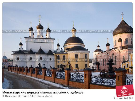Монастырские церкви и монастырское кладбище, фото № 266582, снято 2 января 2008 г. (c) Вячеслав Потапов / Фотобанк Лори