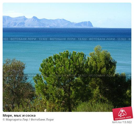 Море, мыс и сосна, фото № 13922, снято 3 ноября 2006 г. (c) Маргарита Лир / Фотобанк Лори