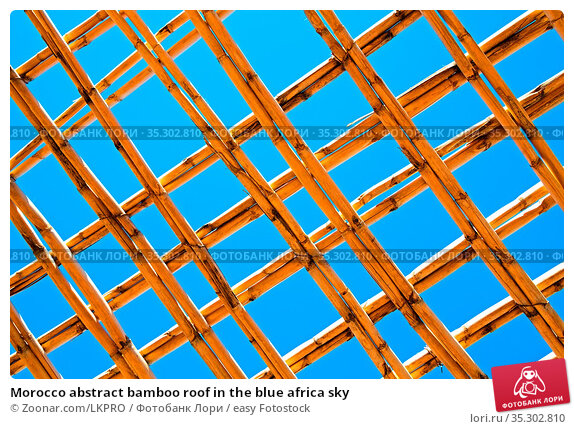 Morocco abstract bamboo roof in the blue africa sky. Стоковое фото, фотограф Zoonar.com/LKPRO / easy Fotostock / Фотобанк Лори