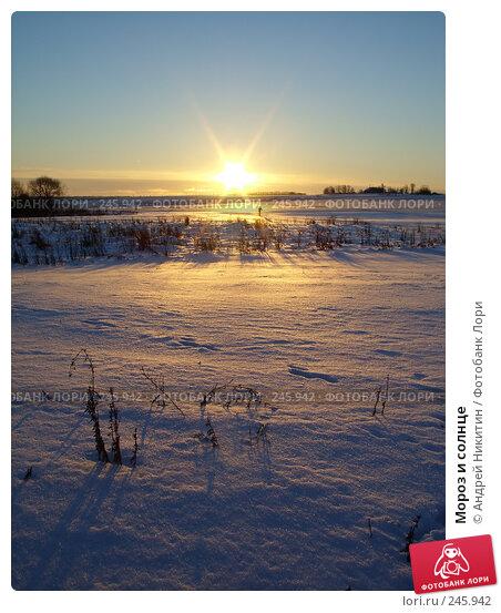 Мороз и солнце, фото № 245942, снято 2 января 2008 г. (c) Андрей Никитин / Фотобанк Лори