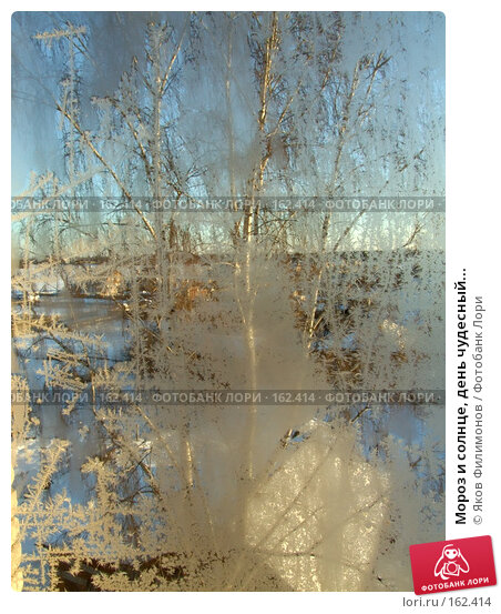Купить «Мороз и солнце, день чудесный...», фото № 162414, снято 23 декабря 2007 г. (c) Яков Филимонов / Фотобанк Лори