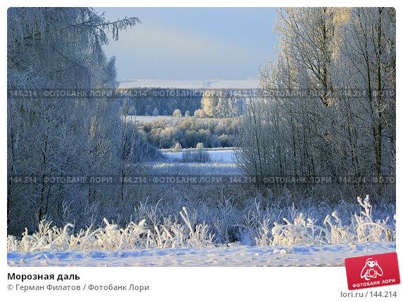 Купить «Морозная даль», фото № 144214, снято 8 ноября 2007 г. (c) Герман Филатов / Фотобанк Лори