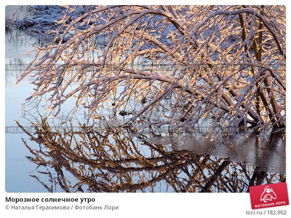 Морозное солнечное утро, фото № 182902, снято 16 января 2008 г. (c) Наталья Герасимова / Фотобанк Лори