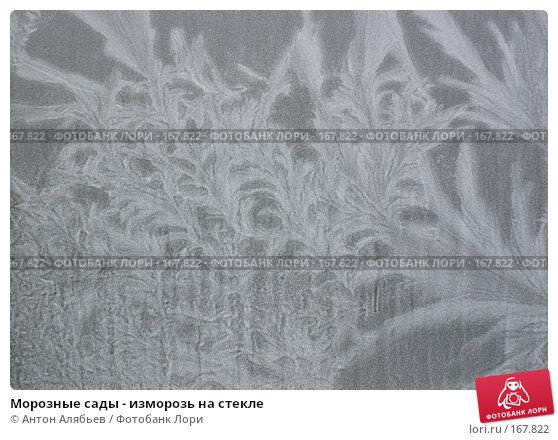 Морозные сады - изморозь на стекле, фото № 167822, снято 6 января 2008 г. (c) Антон Алябьев / Фотобанк Лори