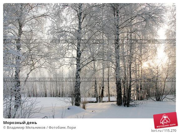 Купить «Морозный день», фото № 115270, снято 1 декабря 2004 г. (c) Владимир Мельников / Фотобанк Лори