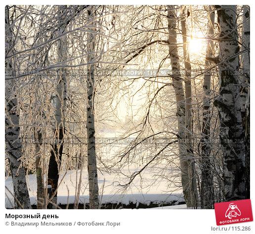 Морозный день, фото № 115286, снято 1 декабря 2004 г. (c) Владимир Мельников / Фотобанк Лори