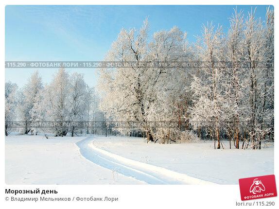 Морозный день, фото № 115290, снято 3 декабря 2004 г. (c) Владимир Мельников / Фотобанк Лори