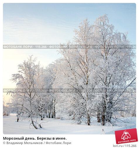 Морозный день. Березы в инее., фото № 115266, снято 24 мая 2017 г. (c) Владимир Мельников / Фотобанк Лори