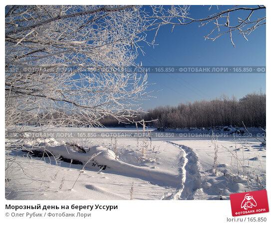 Морозный день на берегу Уссури, фото № 165850, снято 4 января 2008 г. (c) Олег Рубик / Фотобанк Лори