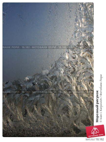 Морозный рисунок, фото № 18182, снято 17 февраля 2007 г. (c) Ivan I. Karpovich / Фотобанк Лори