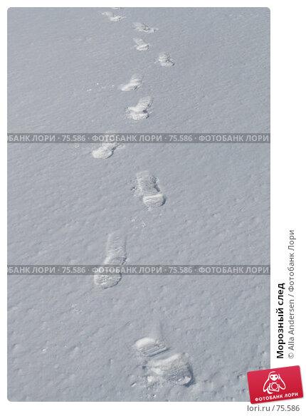Морозный след, фото № 75586, снято 25 января 2006 г. (c) Alla Andersen / Фотобанк Лори