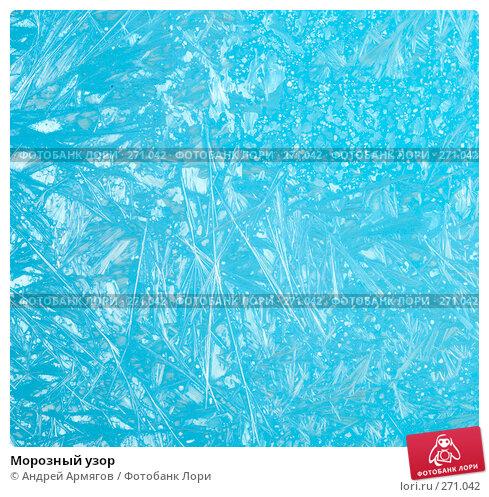 Купить «Морозный узор», фото № 271042, снято 8 ноября 2007 г. (c) Андрей Армягов / Фотобанк Лори