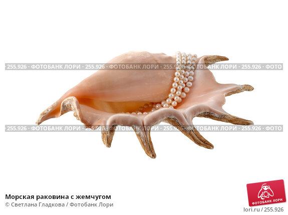 Морская раковина с жемчугом, фото № 255926, снято 12 февраля 2008 г. (c) Cветлана Гладкова / Фотобанк Лори