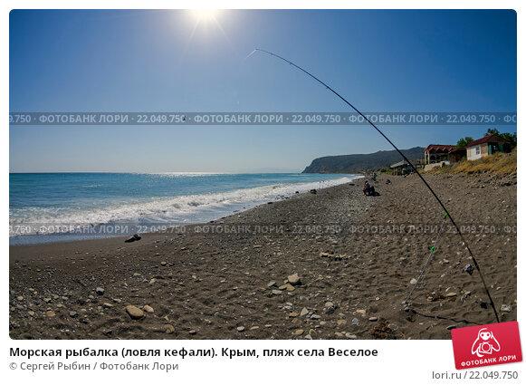 крым рыбацкий берег