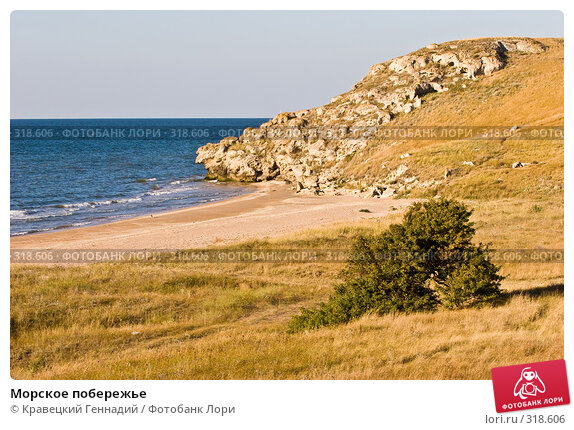 Морское побережье, фото № 318606, снято 11 августа 2005 г. (c) Кравецкий Геннадий / Фотобанк Лори