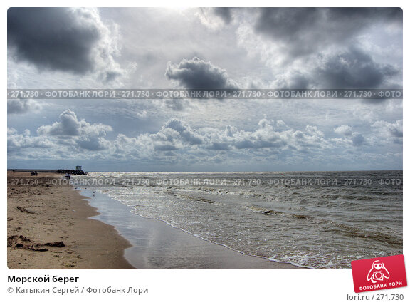 Купить «Морской берег», фото № 271730, снято 18 августа 2007 г. (c) Катыкин Сергей / Фотобанк Лори