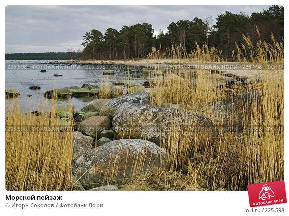 Морской пейзаж, фото № 225598, снято 11 марта 2008 г. (c) Игорь Соколов / Фотобанк Лори