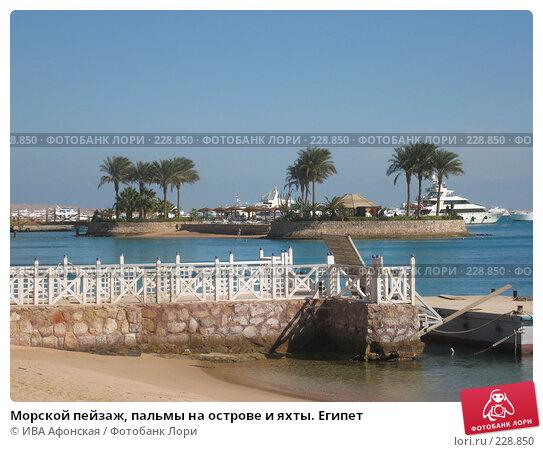 Морской пейзаж, пальмы на острове и яхты. Египет, фото № 228850, снято 8 января 2008 г. (c) ИВА Афонская / Фотобанк Лори