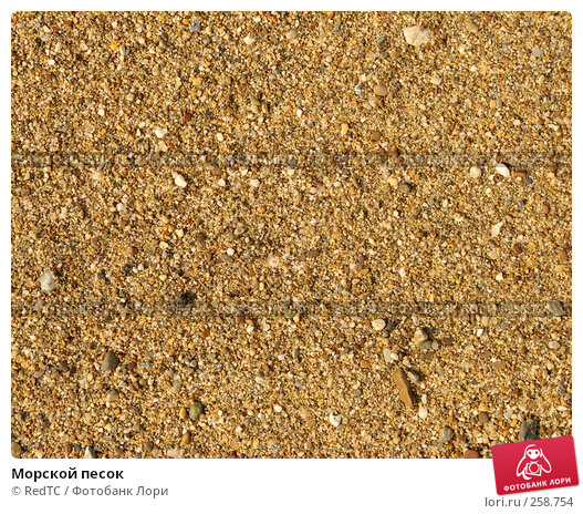 Морской песок, фото № 258754, снято 21 апреля 2008 г. (c) RedTC / Фотобанк Лори