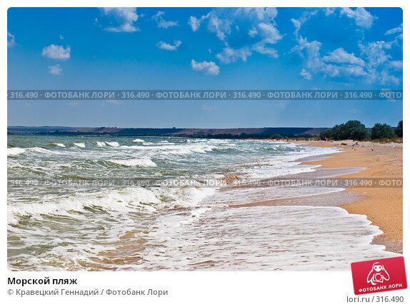 Морской пляж, фото № 316490, снято 11 августа 2005 г. (c) Кравецкий Геннадий / Фотобанк Лори