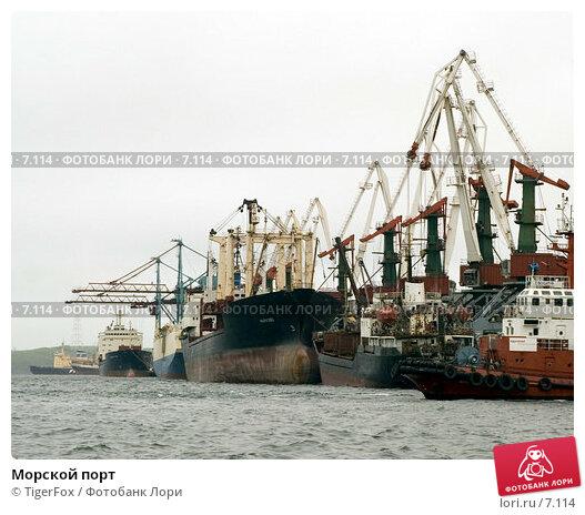 Морской порт, фото № 7114, снято 3 июня 2006 г. (c) TigerFox / Фотобанк Лори