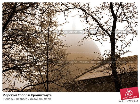 Купить «Морской Собор в Кронштадте», фото № 713846, снято 10 февраля 2009 г. (c) Андрей Первеев / Фотобанк Лори