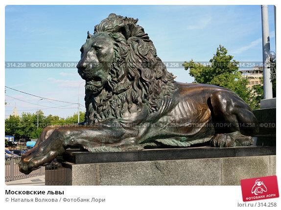 Московские львы, эксклюзивное фото № 314258, снято 5 июня 2008 г. (c) Наталья Волкова / Фотобанк Лори