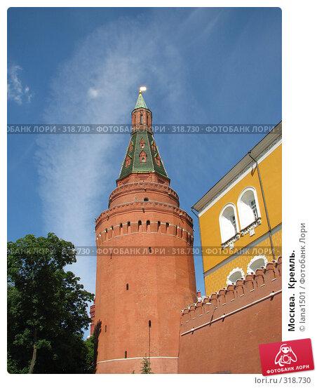 Москва.  Кремль., эксклюзивное фото № 318730, снято 8 июня 2008 г. (c) lana1501 / Фотобанк Лори