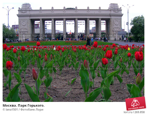 Москва. Парк Горького., эксклюзивное фото № 269858, снято 2 мая 2008 г. (c) lana1501 / Фотобанк Лори