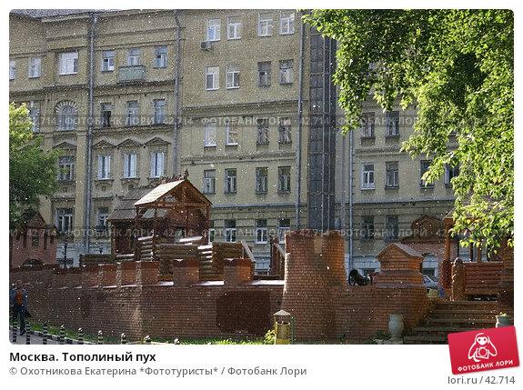 Москва. Тополиный пух, фото № 42714, снято 14 июня 2006 г. (c) Охотникова Екатерина *Фототуристы* / Фотобанк Лори