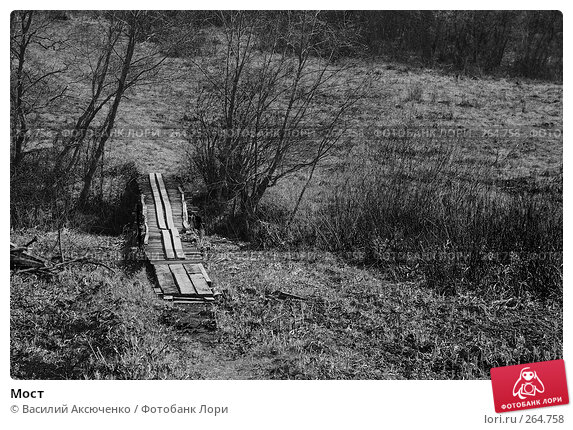 Купить «Мост», фото № 264758, снято 26 апреля 2008 г. (c) Василий Аксюченко / Фотобанк Лори