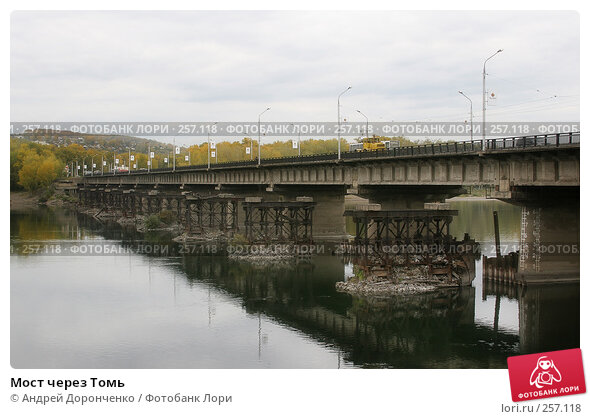 Мост через Томь, фото № 257118, снято 24 октября 2016 г. (c) Андрей Доронченко / Фотобанк Лори