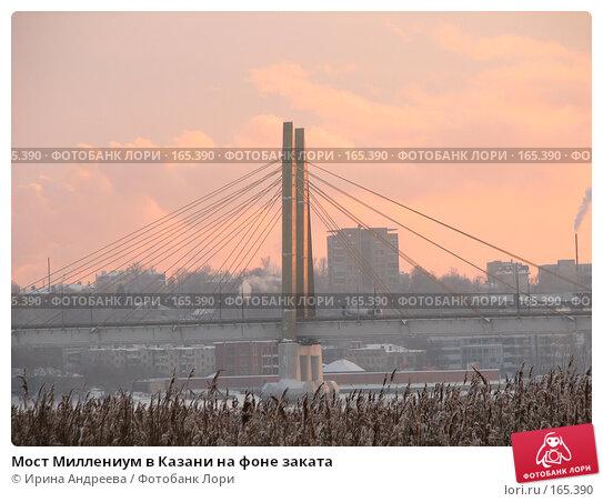 Мост Миллениум в Казани на фоне заката, фото № 165390, снято 8 декабря 2007 г. (c) Ирина Андреева / Фотобанк Лори
