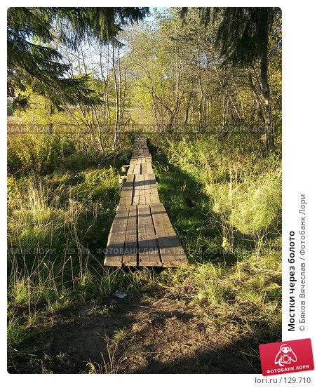 Мостки через болото, фото № 129710, снято 21 сентября 2007 г. (c) Бяков Вячеслав / Фотобанк Лори