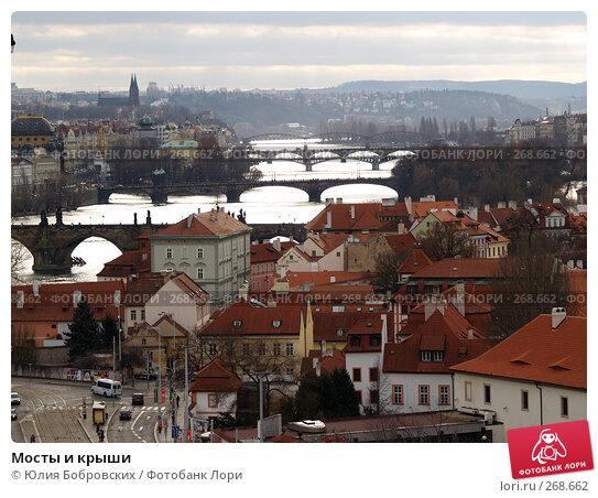 Мосты и крыши, фото № 268662, снято 21 января 2008 г. (c) Юлия Бобровских / Фотобанк Лори