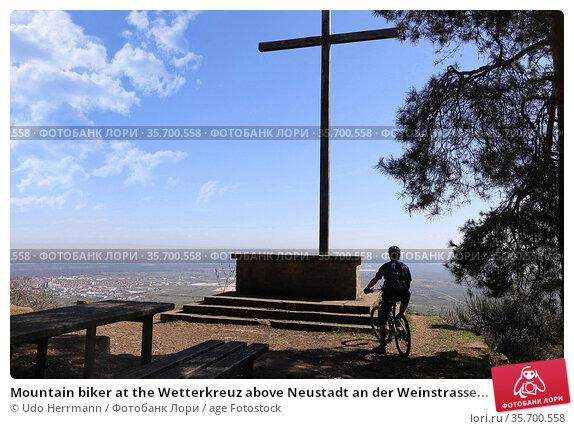 Mountain biker at the Wetterkreuz above Neustadt an der Weinstrasse... Стоковое фото, фотограф Udo Herrmann / age Fotostock / Фотобанк Лори
