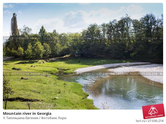 Mountain river in Georgia, фото № 27030214, снято 25 сентября 2017 г. (c) Типляшина Евгения / Фотобанк Лори