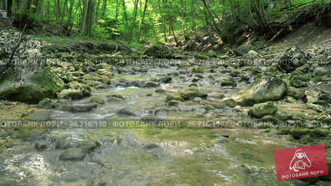 Купить «Mountain River of Crimea», видеоролик № 26716110, снято 29 июля 2017 г. (c) Виктор Бондаренко / Фотобанк Лори