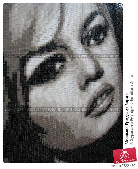 Мозаика Бриджит Бардо, фото № 322450, снято 13 октября 2007 г. (c) Журавлева Виктория / Фотобанк Лори